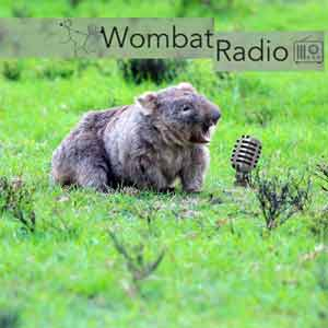 Wombat Radio Podcast With Choreographers Interrogating Artistic Process