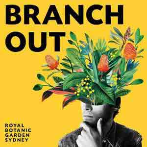 Branch Out