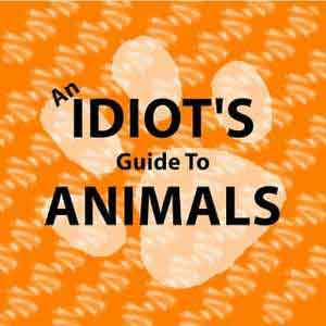 An Idiot's Guide To Animals