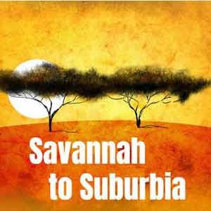 Savannah To Suburbia