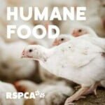 RSPCA Australia's Humane Food Podcast