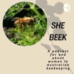 She BEEK - A Podcast For And About Women In Australian Beekeeping