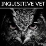 Inquisitive Vet