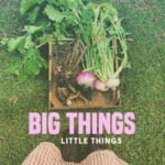 Big Things. Little Things.