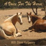 A Voice For The Horse